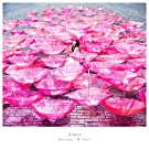 Ref:rain / 眩いばかり(初回生産限定盤)(DVD付)