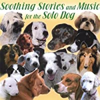 Soothing Stories & Music for the Solo Dog