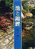 池と錦鯉 (1972年)