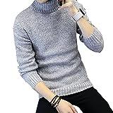 DOPOLE ニット セーター メンズ トップス ウール タートルネック トレーナー 無地 爽やか 肌触りよい カジュアル 細身 アウトドア 防寒トップス