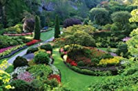 12-feet Wide by 8-feet高。Prepasted壁紙高品質フル壁サイズ壁画からの写真を撮影: Butchart Gardens , Victoria BC。簡単にハング削除し、再利用(ハングAgain )場合U Do As In Ourビデオ