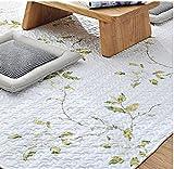 綿花世界 コットン 綿質ラグ 夏用ラグ 洗える 抗菌加工 カーペット 薄手でとっても軽く 夏用ラグマットシンプル 可愛 滑り止め付き 憧れのデザイナーズ・ラグがある生活
