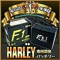 【1年保証付き】 F1 バッテリー HVT-1…