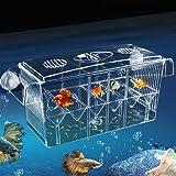 Fish Breeding Box Aquarium Breeding Box Multi- Functional Fish Tank Fish Isolation Box Double Layer Fish Tank Hatchery Breedi