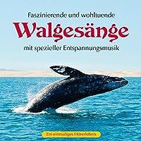 Walgesaenge