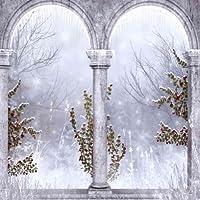 ArchesまたはPillarsテーマビデオスタジオ背景コンピュータ印刷写真背景写真バックドロップCP _ g-043