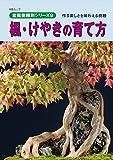 楓・けやきの育て方: 作る楽しさを味わえる樹種 盆栽樹種別シリーズ (KBムック)