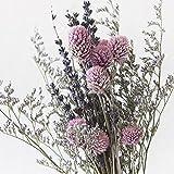 【Blooming&me】フラワーデザイナーおすすめ おしゃれ度UP! 人気のインテリア ドライフラワーミックスSET (千日紅ピンク+ミスティーブルー+ラベンダー) [並行輸入品]