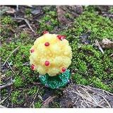 樱のホーム ミニアップルツリーマイクロランドスケープデコレーションフェアリーテイルガーデンドールハウス植物装飾(イエロー)