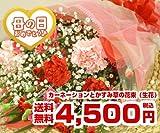 カーネーションとかすみ草の花束(生花) FL-MD-02