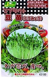カネコ種苗 スプラウトタネ753 豆苗(とうみょう) 10袋セット