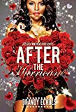 After The Hurricane (STANDALONE) (English Edition)