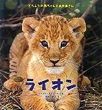 ライオン (どうぶつの赤ちゃんとおかあさん)