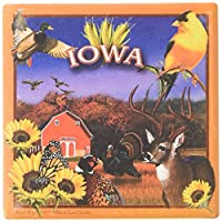 "CoasterStone SQ028 Absorbent Coasters, 11cm,""Iowa"", Set of 4"