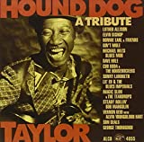 Hound Dog Taylor: Tribute 画像