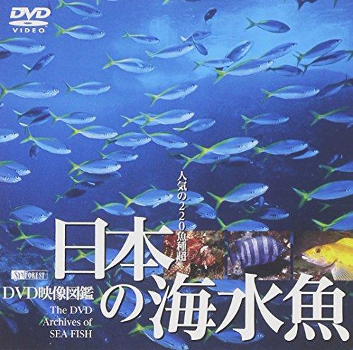 シンフォレストDVD 日本の海水魚 DVD映像図鑑...