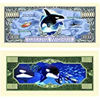 Killer Whale Million Dollar Bill In Top Quality Currency Protector by American Art Classics [並行輸入品]