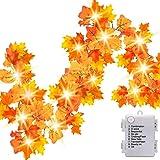Luditek 14.7ft Thanksgiving Decorations Autumn Garland - Thanksgiving Decor Fall Garland Lights with 40 LED - 8 Blinking Mode