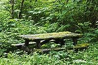 Robert L Potts Design Pics (17 x 11)による、廃棄されたピクニックテーブルは、森のエルジーのオレゴン州アメリアのポスタープリントでリサイクルされています。