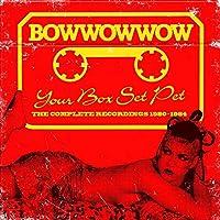 ユア・ボックス・セット・ペット~ザ・コンプリート・レコーディングス1980-1984 (YOUR BOX SET PET ~THE COMPLETE RECORDINGS 1980-1984)