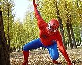 HALLE SHOP---スパイダーマン  全身タイツ ゼンタイ cosplay   弾力・伸縮性あり  コスチューム ハロウィン、クリスマス、イベント、お祭り仮装など (178−186cmサイズ)