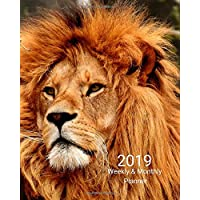 2019 Weekly and Monthly Planner: Strong Lion Daily Organizer -To Do -Calendar in Review/Monthly Calendar with U.S. Holidays–Notes Volume 1