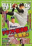 野球太郎 No.033 2019ドラフト総決算&2020大展望号 画像