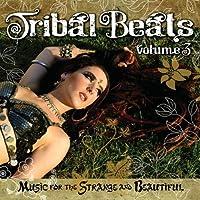 Vol. 3-Tribal Beats