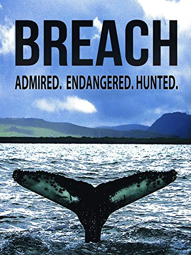 Breach: Admired, Endangered, Hunted
