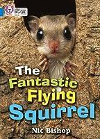 The Fantastic Flying Squirrel (Collins Big Cat)