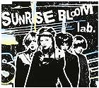 SUNRISE BLOOM(在庫あり。)