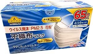 快適 マスク ふつうサイズ 65枚入【ウイルス飛沫 PM2.5 花粉対策】 99%カットフィルター加工 (試験機関:NELSON研究所測定)