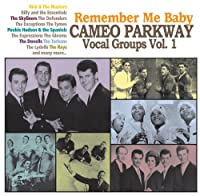 Cameo Parkway Vocal Group Vol.1