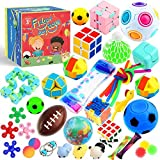 PP PHIMOTA Sensory Toys Set 24 Pack, Stress Relief Fidget Hand Toys for Adults and Kids, Sensory Fidget and Squeeze Widget fo