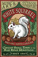 Brevard、ノースカロライナ州–ホワイトSquirrel Vintage Sign 16 x 24 Signed Art Print LANT-40449-709