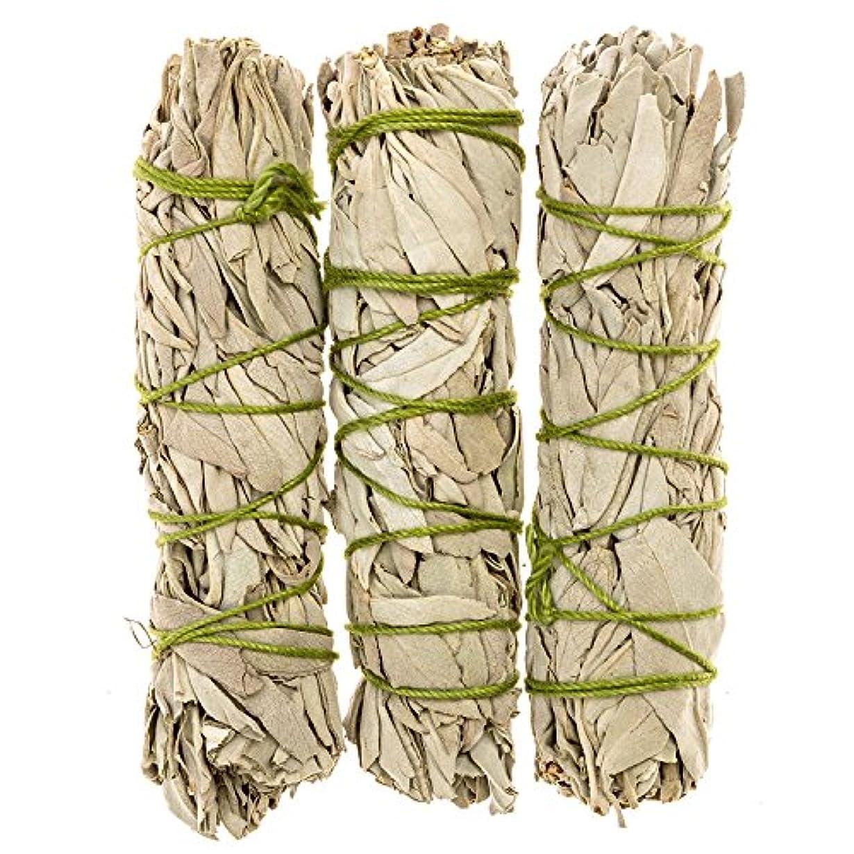 青記念日カトリック教徒MiniカリフォルニアホワイトセージスマッジSticks。個人Smudging、ネイティブHealing、Mysticalセージ、約4