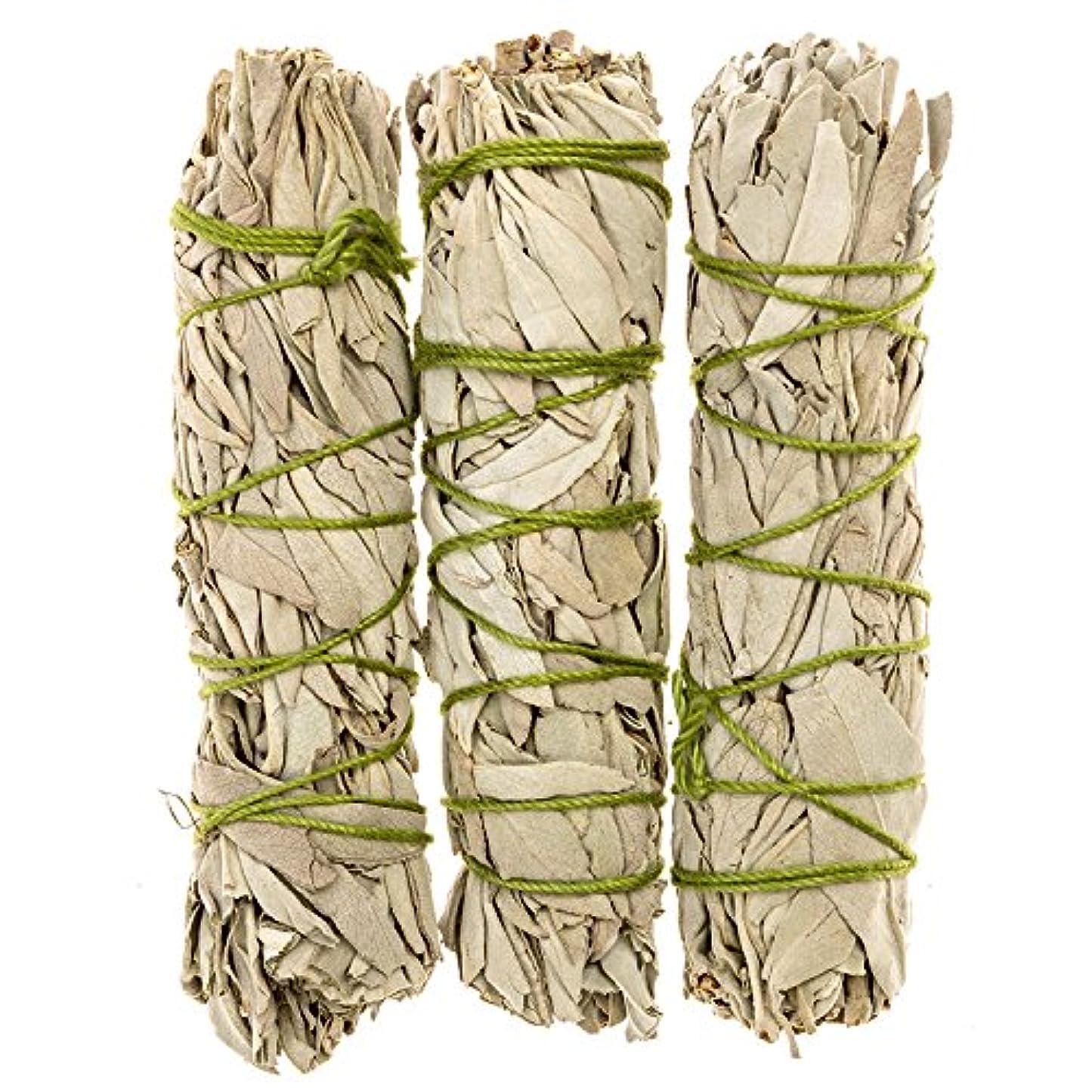 柔和季節汚染MiniカリフォルニアホワイトセージスマッジSticks。個人Smudging、ネイティブHealing、Mysticalセージ、約4