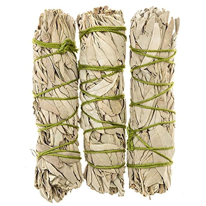 再発するオーガニック保証金MiniカリフォルニアホワイトセージスマッジSticks。個人Smudging、ネイティブHealing、Mysticalセージ、約4