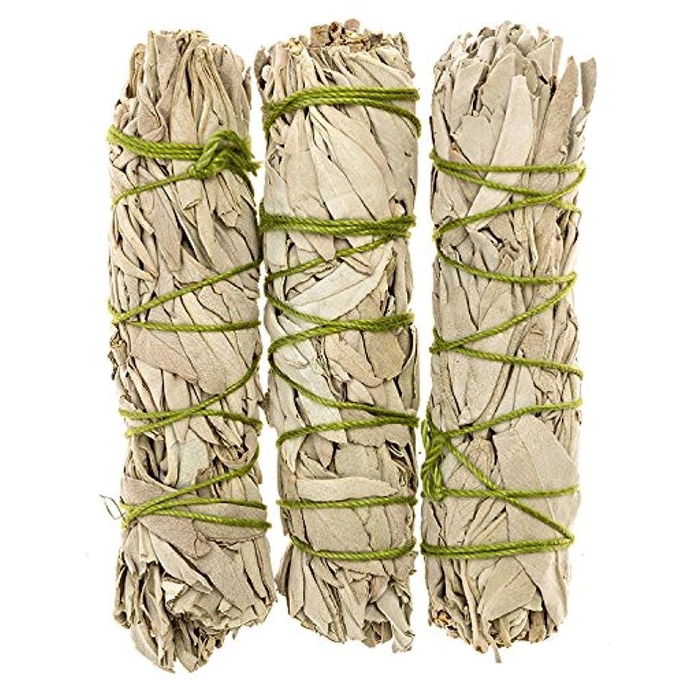 五月不毛の投獄MiniカリフォルニアホワイトセージスマッジSticks。個人Smudging、ネイティブHealing、Mysticalセージ、約4