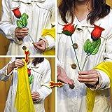 ★マジック?手品★分裂するバラ ●F5282