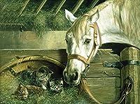 Wowdecor 数字油絵 数字キット40×50cm - ホワイトホース&かわいい子猫ファミリー - DIY ぬりえ 塗り絵 絵画 趣味 インテリア (内部木製フレーム)