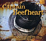 Roots of Captain Beefheart
