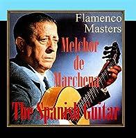 The Spanish Guitar Flamenco Masters [並行輸入品]