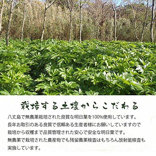 国産の手作り 明日葉茶 2g×40包