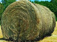 Round Bale Slow Feed Hay Net by Texas Haynet [並行輸入品]