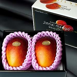 神内マンゴー 北海道産 3Lサイズ 秀品 2玉 アップルマンゴー アーウィン種