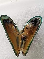 BluCurrent Green Mussels- Frozen
