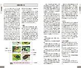 フィールドガイド 身近な昆虫識別図鑑 画像
