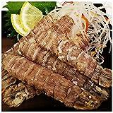 しゃこ 刺身用しゃこ 20尾 2パック シャコエビ ガサエビ ボイル 寿司ネタ 珍味