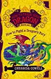 HOW TO FIGHT A DRAGON'S FURY (How to Train Your Dragon, 12)
